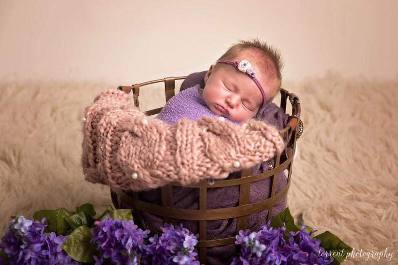 Kaylee Koester newborn (54 of 63)