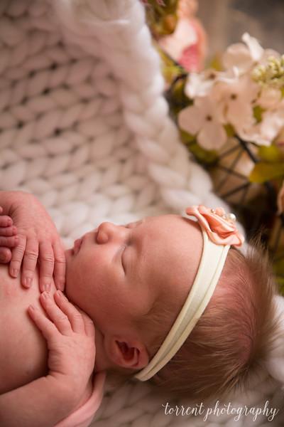 Kaylee Koester newborn (28 of 63)