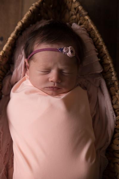 Kennidy newborn 2017 (17 of 62)