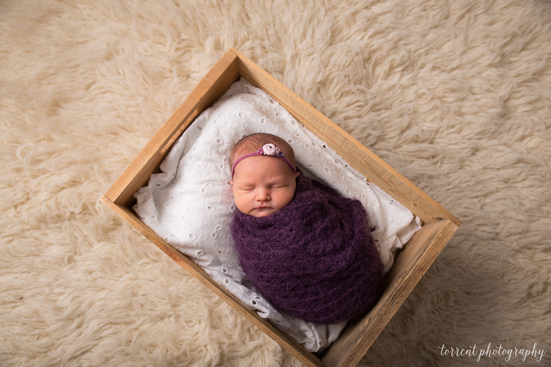 Kristen Schoen newborn  (37 of 95)