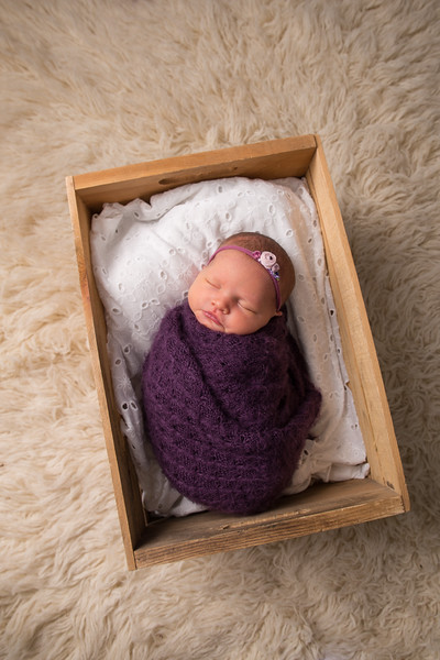 Kristen Schoen newborn  (35 of 95)