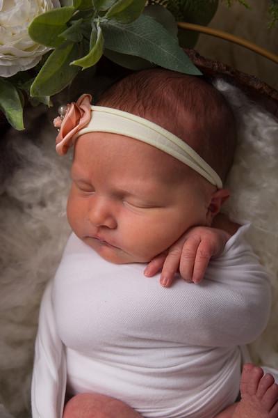 Kristen Schoen newborn  (32 of 95)