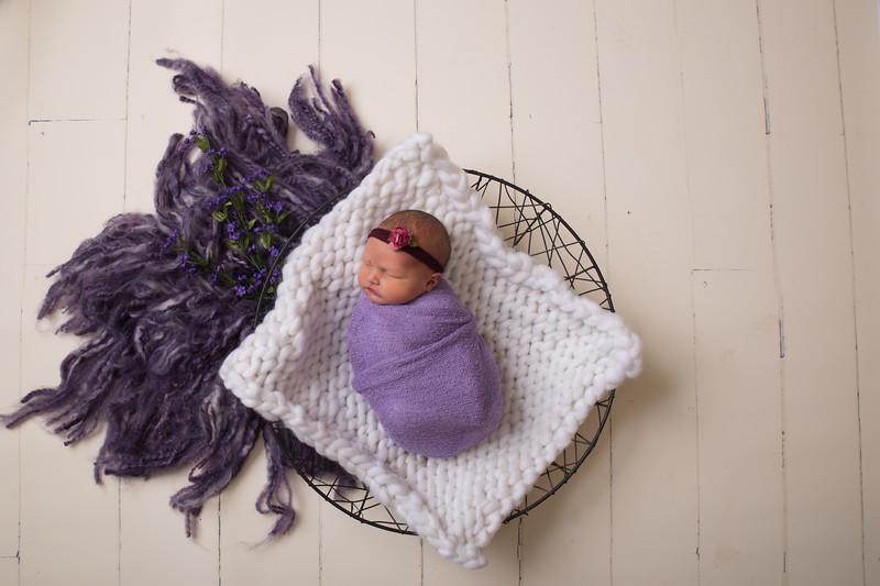 Kristen Schoen newborn  (41 of 95)
