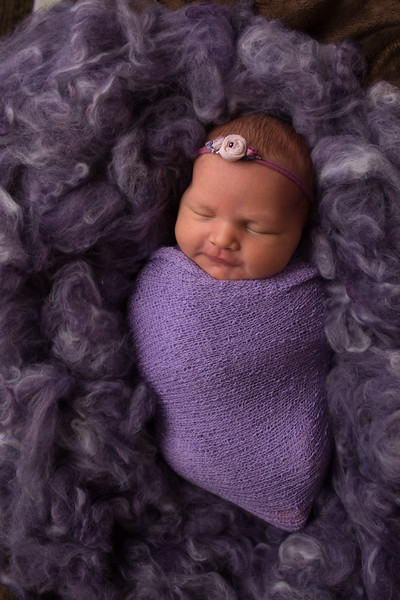 Kristen Schoen newborn  (46 of 95)
