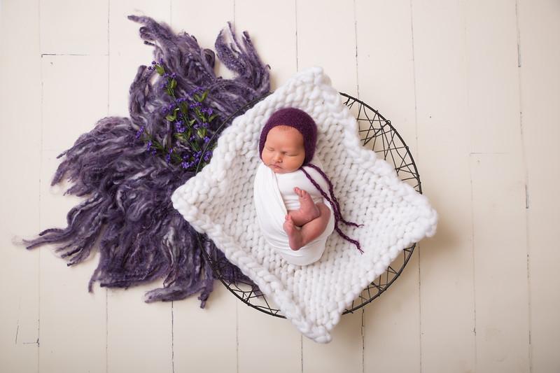 Kristen Schoen newborn  (38 of 95)