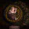 Linda newborn Composite 4