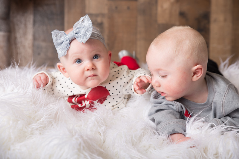 6 mo twins Lindsey Shewfelt (14 of 80)