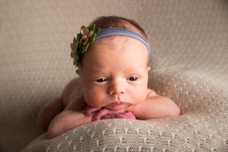 Melinda Sue D'eredita Newborn  (19 of 64)