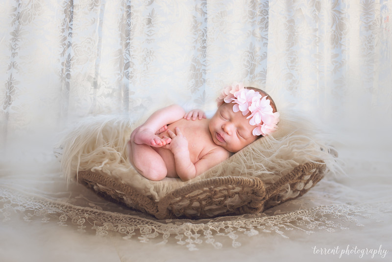 Melissa Reese Newborn Digital Backdrop by The Garden Drean on EtsyMelissa Reese