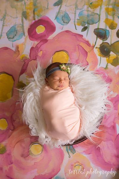 Melissa Reese newborn (56 of 82)