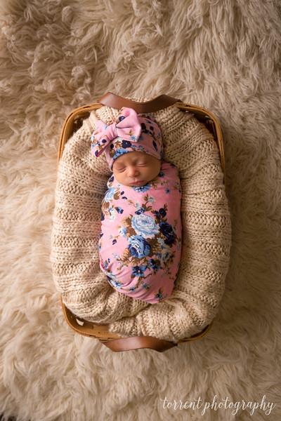 Melissa Reese newborn (70 of 82)