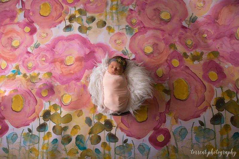 Melissa Reese newborn (54 of 82)