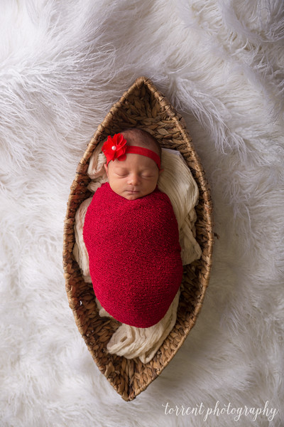 Melissa Reese newborn (60 of 82)