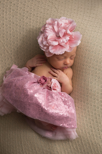 Melissa Reese newborn (36 of 82)