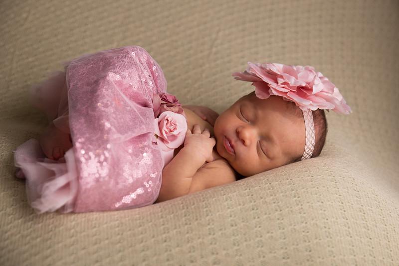 Melissa Reese newborn (35 of 82)