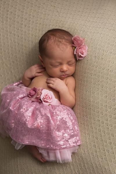 Melissa Reese newborn (42 of 82)