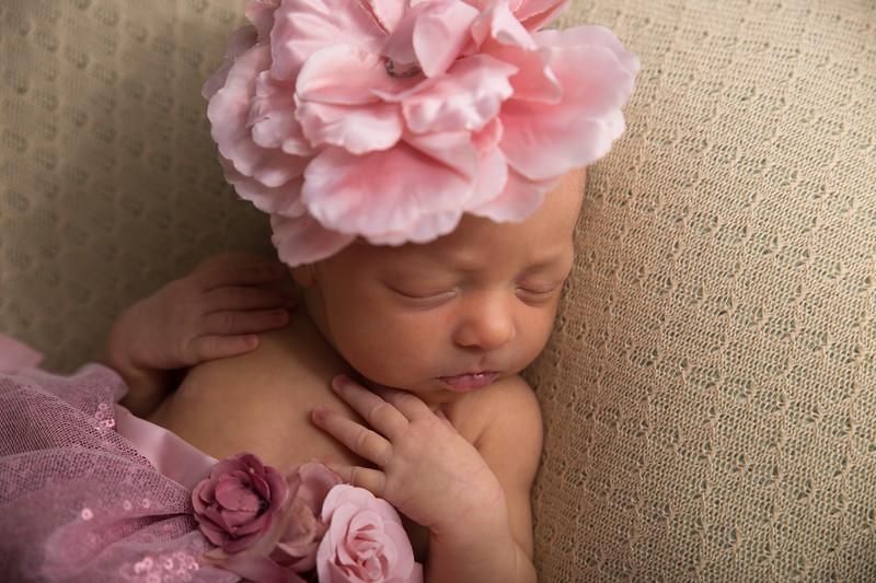 Melissa Reese newborn (38 of 82)