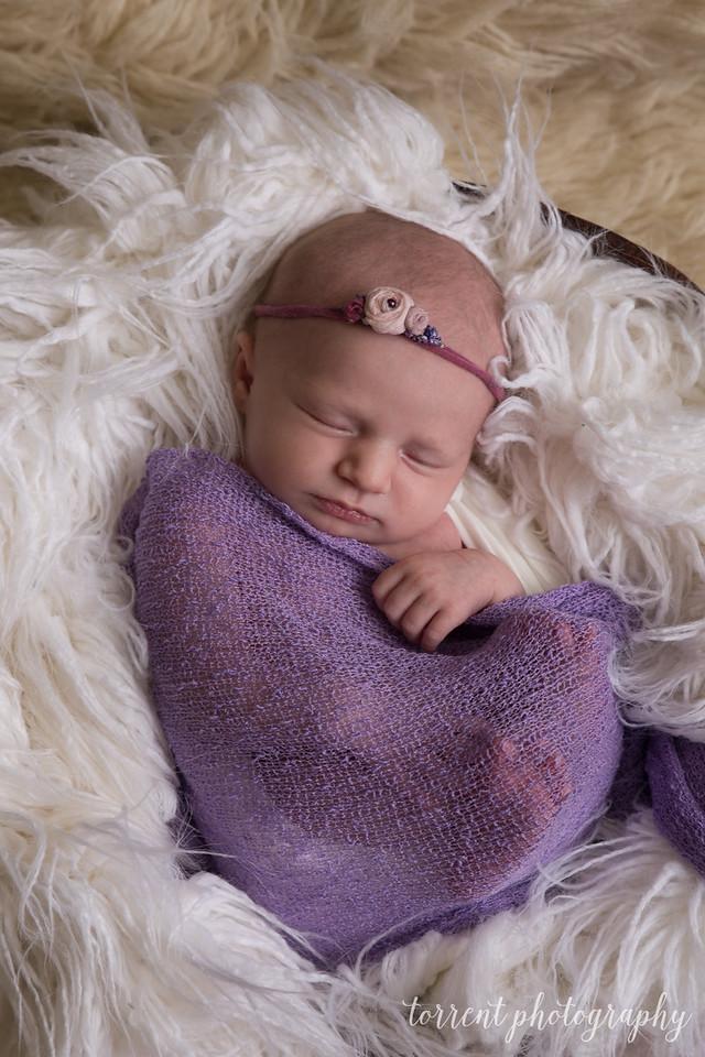 Paislee Newborn Proofs (42 of 77)