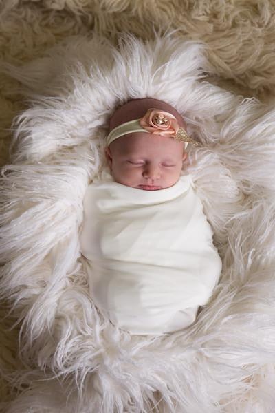 Paislee Newborn Proofs (37 of 77)