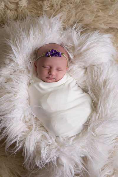 Paislee Newborn Proofs (36 of 77)