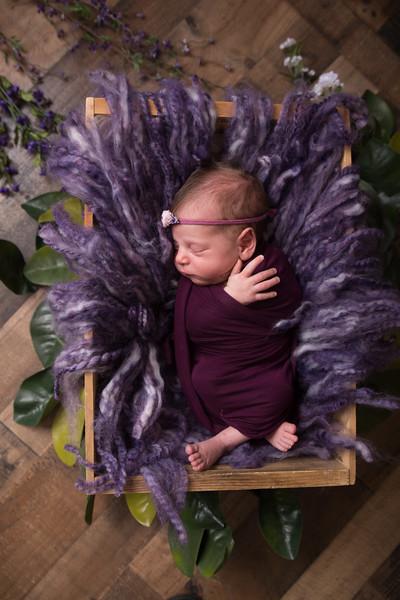 Rana Alkhouri Newborn (1 of 34)