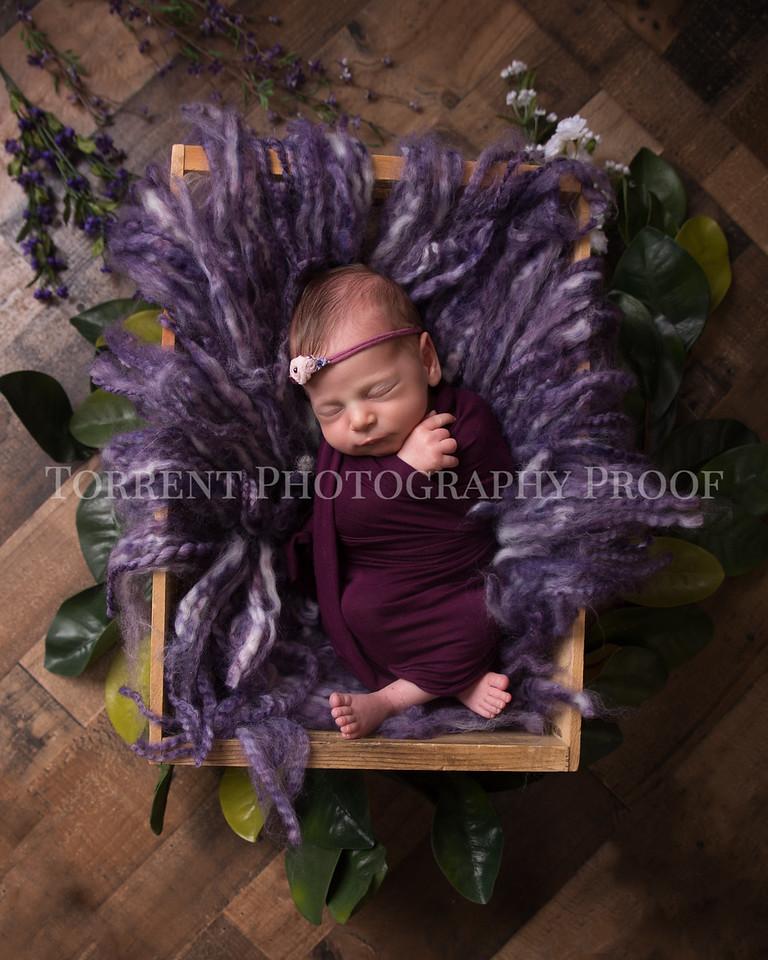 Rana Alkhouri Newborn (2 of 34)