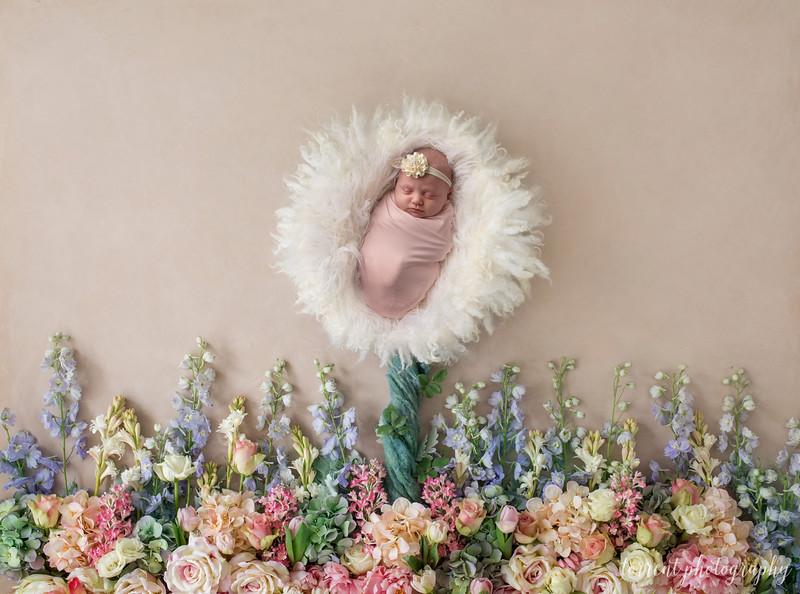 Rebecca newborn composite 2