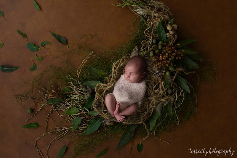 Chase newborn composite 1