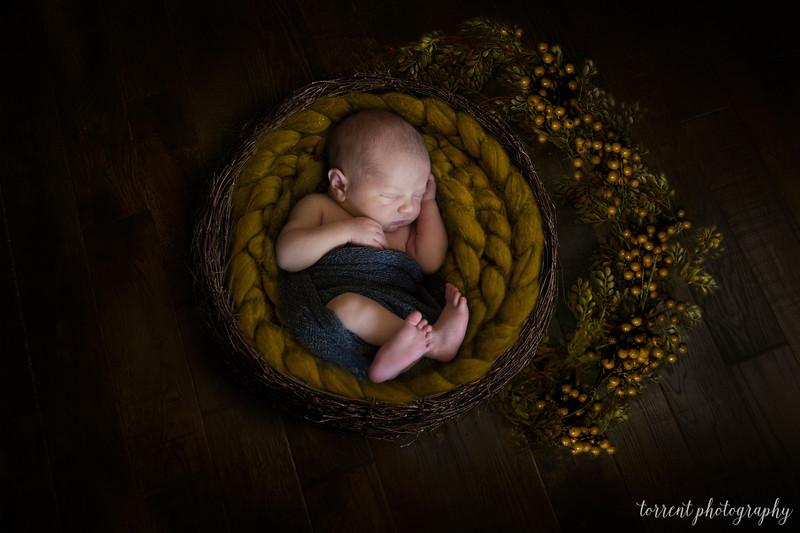 Baby Blake Composite copy