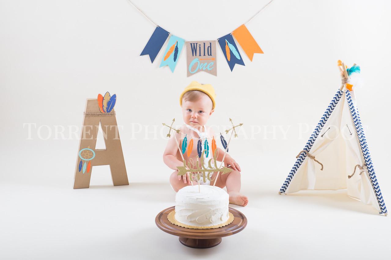 Stacy Austin Cake Smash (21 of 124)