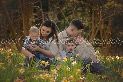 chloe daffodils