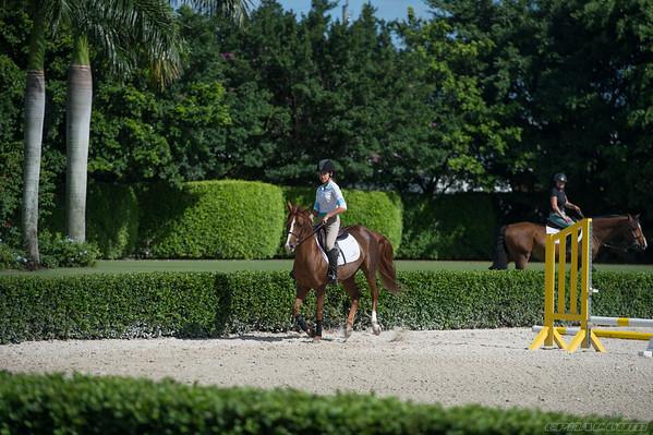 Liana's Day w/horses