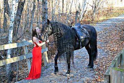 3 Horses - 1 day of magic