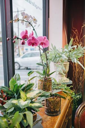 Galleria Florist | Falls Church, VA