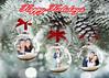 5x7 3 Ornaments