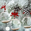 16x20 Frosted Glass Ornaments