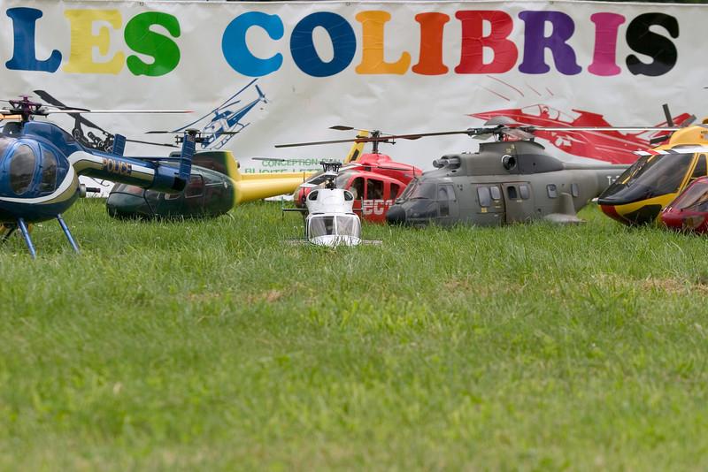 Les Colibris Expo - Juin 2008
