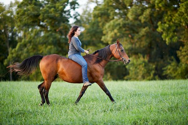 KS_Horse-24Sep16-Img-0053
