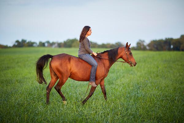 KS_Horse-24Sep16-Img-0030