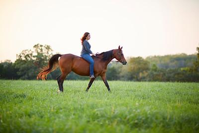 KS_Horse-24Sep16-Img-0057