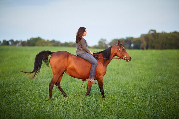 KS_Horse-24Sep16-Img-0029
