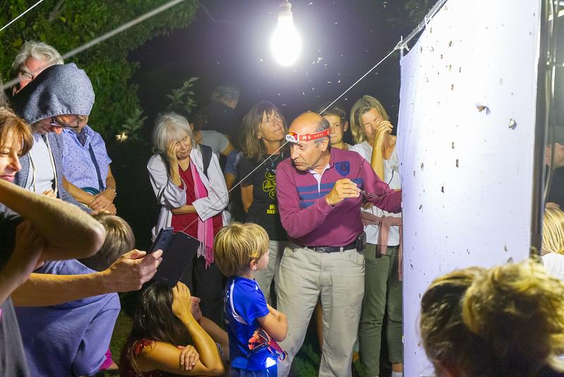 Animations nocturnes au jardin botanique littoral pour les Journées Européennes du Patrimoine. Ateliers nocturnes astronomie et insectes. Atelier « Observation des insectes nocturnes », par le GEPO (Groupe Entomologique des Pyrénées Occidentales)