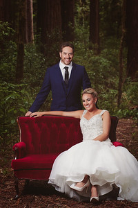 Bride & Groom formals in the beautiful Kiriwhakapapa forest