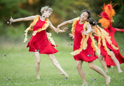 Danceworks-HandelsBestiary-20170615-0725