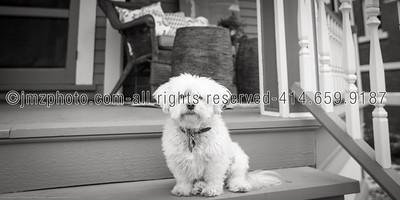 DecDen_Wemlinger Porch_20141029-12