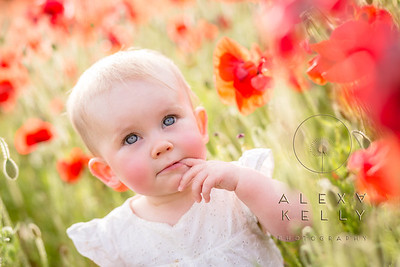 Emilia in the poppies