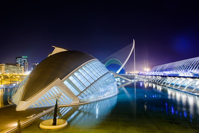 The Ciudad de las Artes y las Ciencias in Valencia, Spain is seen at nighttime on July 8, 2013.