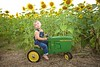 Breininger_sunflower_ 020