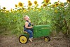 Breininger_sunflower_ 019