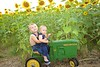 Breininger_sunflower_ 013